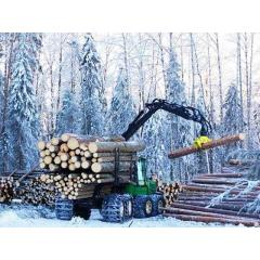 Услуги заготовки леса